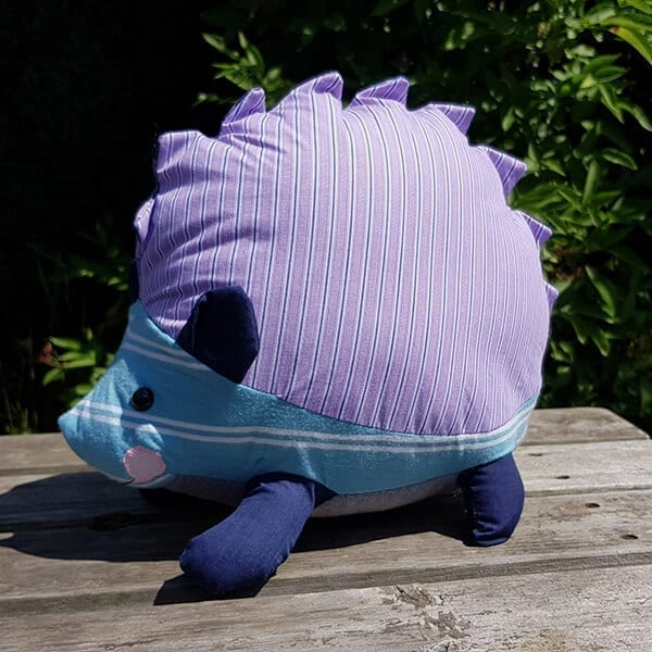 Memory Hedgehog